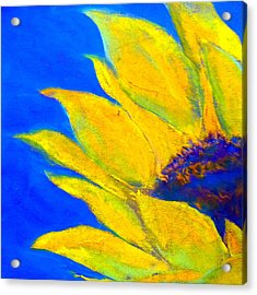 Sunflower In Blue Acrylic Print by Sue Jacobi