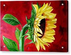 Sunflower Sunshine Acrylic Print by Maria Soto Robbins
