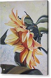 Sunflower Acrylic Print by Teresa Beyer