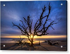 Sunrise Jewel Acrylic Print by Debra and Dave Vanderlaan