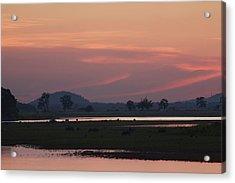 Sunrise Over Kaziranga National Park Acrylic Print