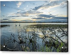 Acrylic Print featuring the photograph Sunset by Jaroslaw Grudzinski