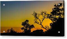 Sunset Silhouette Acrylic Print by Debra and Dave Vanderlaan