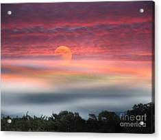 Super Moon Over Santa Rosa Acrylic Print