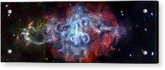 Supernova Remnant Acrylic Print by Nasa/cxc/sao