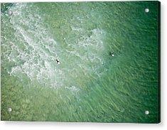 Surfers, Gold Coast Acrylic Print by Brett Price