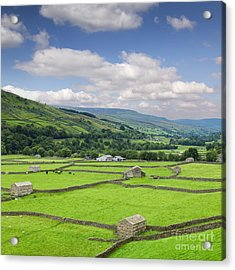 Swaledale Yorkshire Dales England Acrylic Print by Colin and Linda McKie