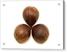 Acrylic Print featuring the photograph Sweet Chestnuts Fruits by Fabrizio Troiani