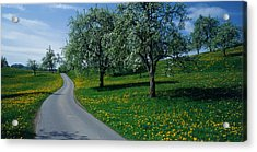 Switzerland, Zug, Road Acrylic Print