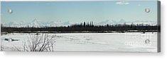 The Alaska Range Acrylic Print by Jennifer Kimberly