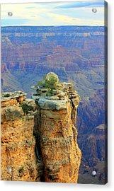 The Canyon Balanced Rock Acrylic Print by Douglas Miller