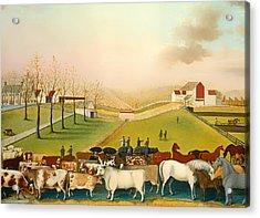 The Cornell Farm Acrylic Print