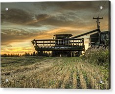 The Harvest Time Acrylic Print