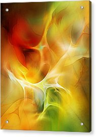 Acrylic Print featuring the digital art The Heart Of The Matter by David Lane