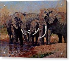 The Mud Bath Acrylic Print