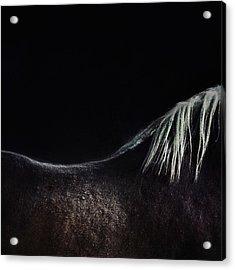 The Naked Horse Acrylic Print