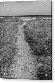 The Path Acrylic Print by Glenn DiPaola