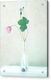 The Pink Flower Acrylic Print