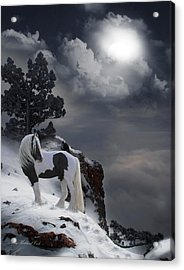 The Rock Acrylic Print by Terry Kirkland Cook