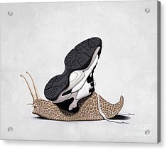 The Sneaker Wordless Acrylic Print