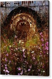 The Spare Wheel  Acrylic Print by Steve Taylor