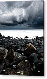 The Storm Acrylic Print by Jorge Maia