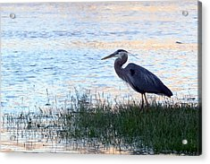The Tranquil Blues Acrylic Print