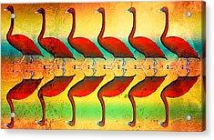 The Wandering Swan  Acrylic Print