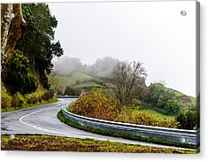 The Winding Road Acrylic Print