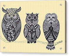 Three Owls On A Branch Acrylic Print by Karen Larter