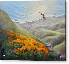 Through The Eyes Of The Condor Acrylic Print by Karin  Leonard