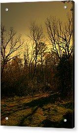 Time Of Long Shadows Acrylic Print by Nina Fosdick