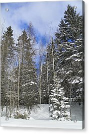 To The Clouds Acrylic Print by Gene Cyr