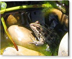 Acrylic Print featuring the digital art Toad by Helene U Taylor