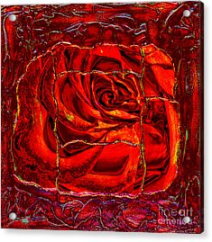 Torn Rose Acrylic Print by Pattie Calfy