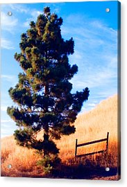 Tower Of Strength Acrylic Print by Ron Regalado