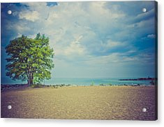 Acrylic Print featuring the photograph Tranquility by Sara Frank