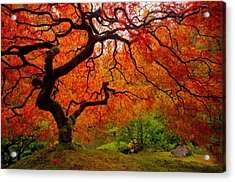 Tree Fire Acrylic Print