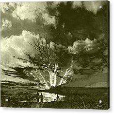 Tree Romance Acrylic Print by Florin Birjoveanu