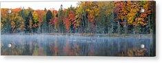 Trees In Autumn At Lake Hiawatha, Alger Acrylic Print