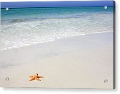 Tropical-beach5 Acrylic Print