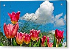 Flower 8 Acrylic Print