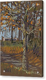 Turning Leaves Acrylic Print by Donald Maier
