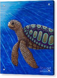 Turtle Painting Bomber Triptych 2 Acrylic Print