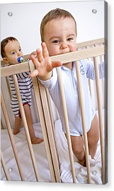 Twin Baby Boys In Their Cots Acrylic Print