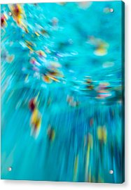 Acrylic Print featuring the photograph Untitled by Darryl Dalton