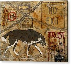 Urban Dog Acrylic Print by Judy Wood