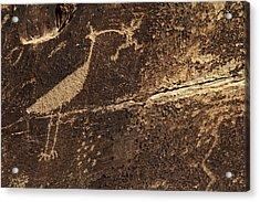 Usa, Arizona, Petrified Forest Acrylic Print