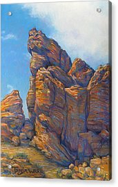 Valley Of Fire Acrylic Print by Tanja Ware