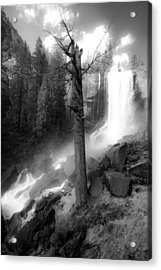 Vernal Waterfall Acrylic Print by Celso Diniz